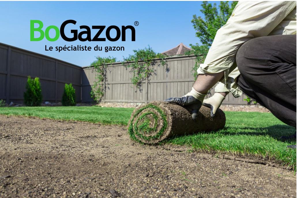 Comment poser du gazon en rouleau naturel archives bogazon for Gazon naturel en rouleau
